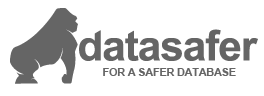 Logo Datasafer now you database is safer